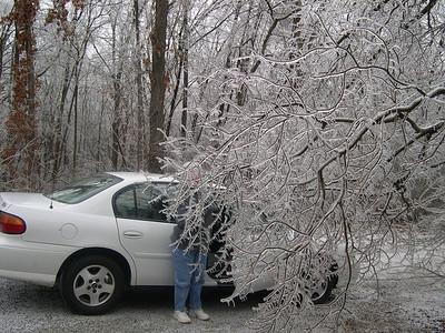 Ice Storm 2007 (28)