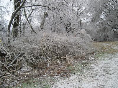 Ice Storm 2007 (37)