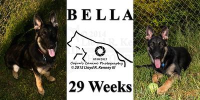 Bella @ 29 Weeks