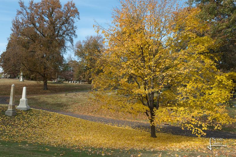 Bellefontaine Cemetery-7