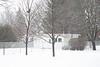 Snow falling in the backyard. .6s