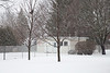 Snow falling in the backyard. 1/20 s