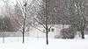 Snow falling 2020 January 25