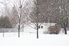 Snow falling in the backyard. 1/200 s