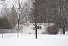 Snow falling in the backyard. 1/5 s