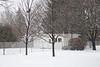 Snow falling in the backyard. 1/20s