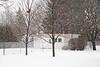 Snow falling in the backyard. 1/160 s
