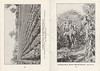 1920 Belleville Booklet - photographs: a field of celery, cutting corn