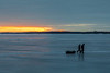 Ice fishers heading across the Bay of the Quinte just after sunrise.