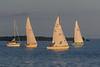 Sailboats down the Bay of Quinte.