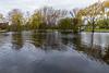 Turtle Pond looking west.