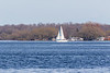Sail boat across the Bay