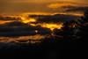 Kingston sunset
