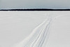 Snowmobile and ATV tracks heading out across the Bay of Quinte.