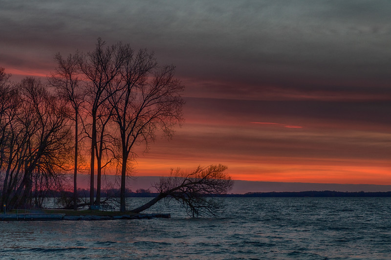Trees near the George Street Boat Launch along the Bay of Quinte in Belleville Ontario before sunrise 2020 April 29 HDR efx tone mapping dark from single exposure