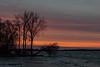 Trees near the George Street Boat Launch along the Bay of Quinte in Belleville Ontario before sunrise 2020 April 29