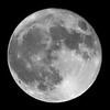 Hallowe'en full moon 2020 October 31.