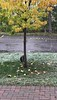 First snow 2020 October 27