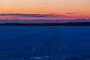 Tracks on the ice of the Bay of Quinte before sunrise 2021 February 26