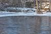 Ducks on the Moira River below the Lott Dam