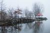 Bay of Quinte on a foggy morning near Memory Lane.