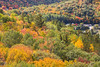 View from Eagle's Nest Hawk Watch. Fall foilage at Bancroft.