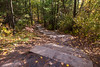 Sager Conservation Area - steps down from lookout tower