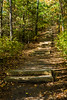 Sager Conservation Area - steps to lookout tower