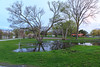 Surface water at West Zwicks Park.