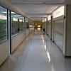 Lots of light in the hallways.