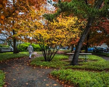 Bellevue-October 2017