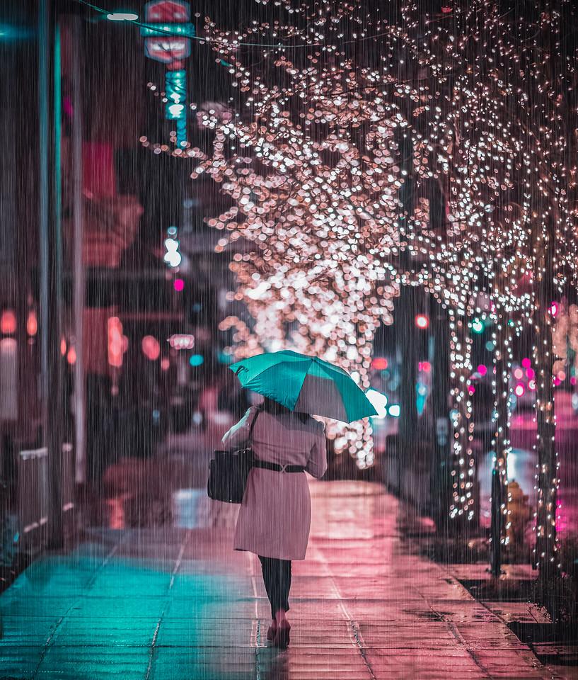 Raindrop Lane