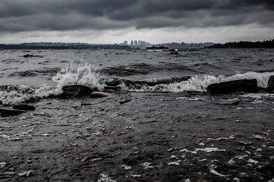 Moody Vibes on Lake Washington