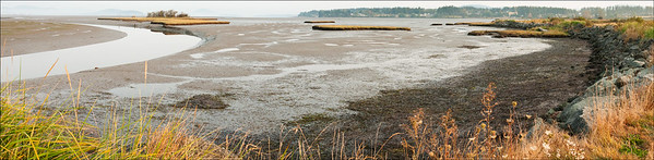 Padilla Bay, Washington panorama
