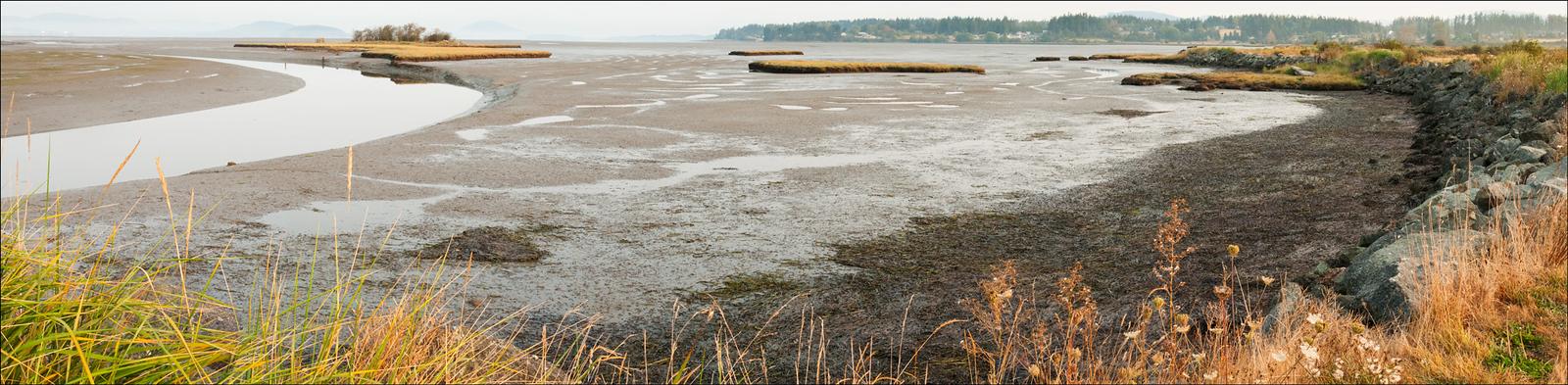 Padilla Bay, Washington panorama