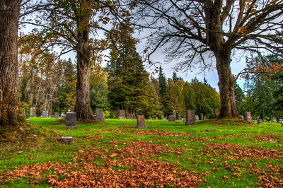 cemetery-fall-leaves