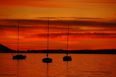 red-sail-boats-sunset