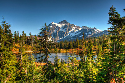 mount-shuksan-lake-forest