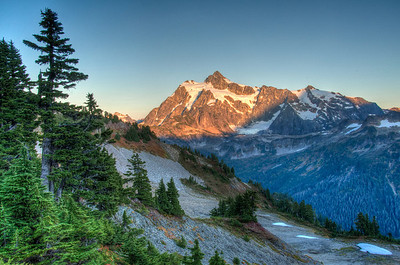 mount-shuksan-forest