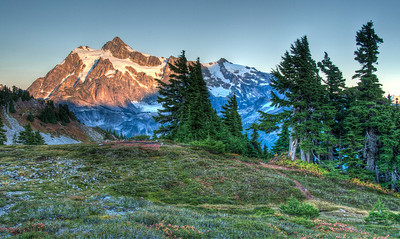 mount-shuksan-meadow