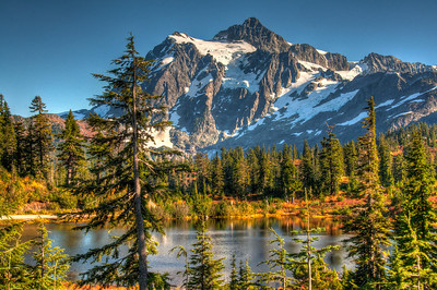 mount-shuksan-lake-forest-2