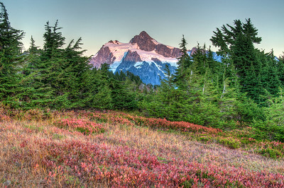 mount-shuksan-meadow-2