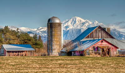 mount-baker-farm-2