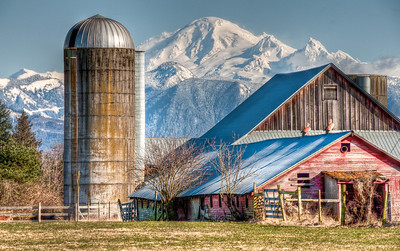 mount-baker-farm-3