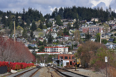 south-hill-bellingham