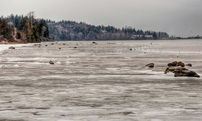 frozen-shore-3