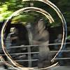 10-23-2010 Bellydance Extravaganza 1789