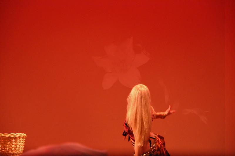 10-23-2010 Bellydance Extravaganza 153