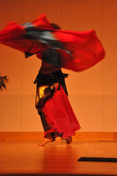 8-11-2012 Dance Showcase with Mohamed Shahin 128 (14)