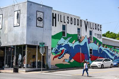 Hillsboro Village